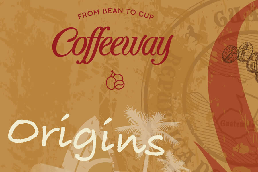 Coffeeway origins / Costa Rican Tarazzu